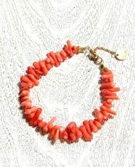 lida-coral1